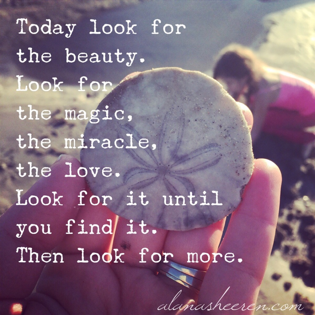 Look for the beauty